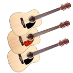 12-String Acoustic Guitar