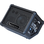 ProFormance 50 watt Powered Monitor Speaker